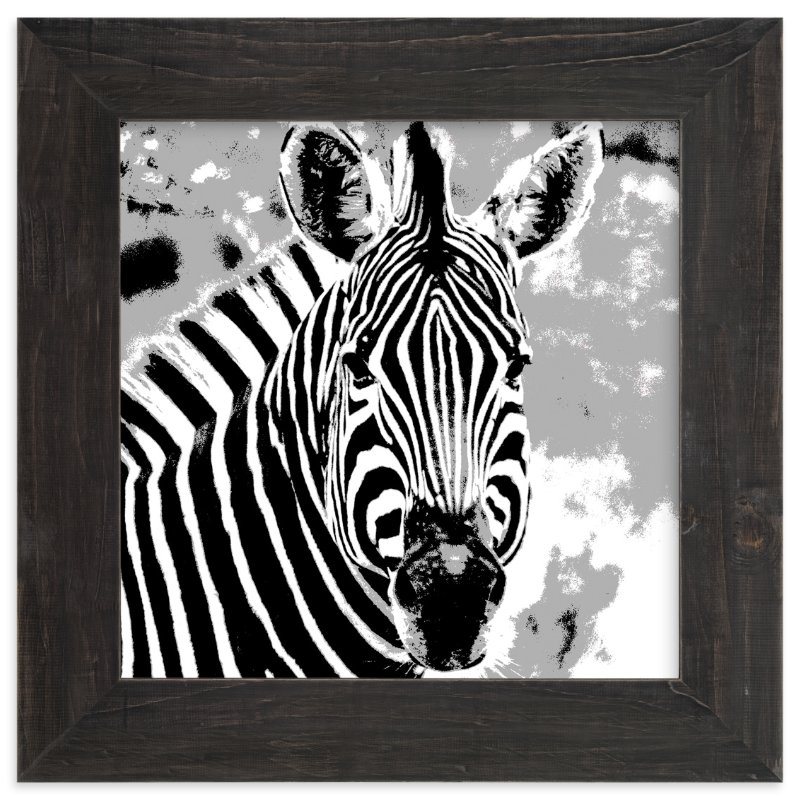 """""""mr ZEBRA"""" - Art Print by Gail Schechter in beautiful frame options and a variety of sizes."""