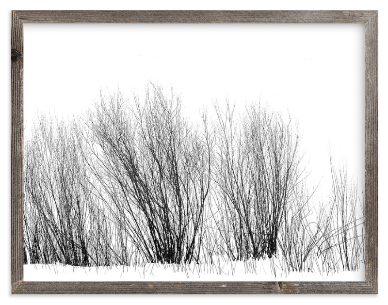 """""""Winter Willow"""" - Art Print by Leslie Le Coq in beautiful frame options and a variety of sizes."""