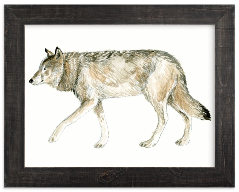 """Wolf Watercolour Study"" - Art Print by Eve Schultz in beautiful frame options and a variety of sizes."