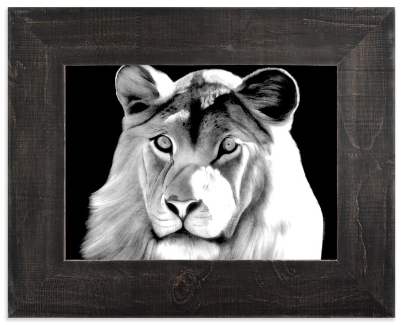 """""""Lion"""" - Art Print by Jerry Winick in beautiful frame options and a variety of sizes."""