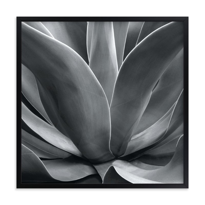 """California Succulent"" - Art Print by LeeAnn Dougherty in beautiful frame options and a variety of sizes."