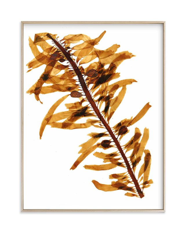 """""""kelp print 001"""" - Art Print by aeryn donnelly design in beautiful frame options and a variety of sizes."""