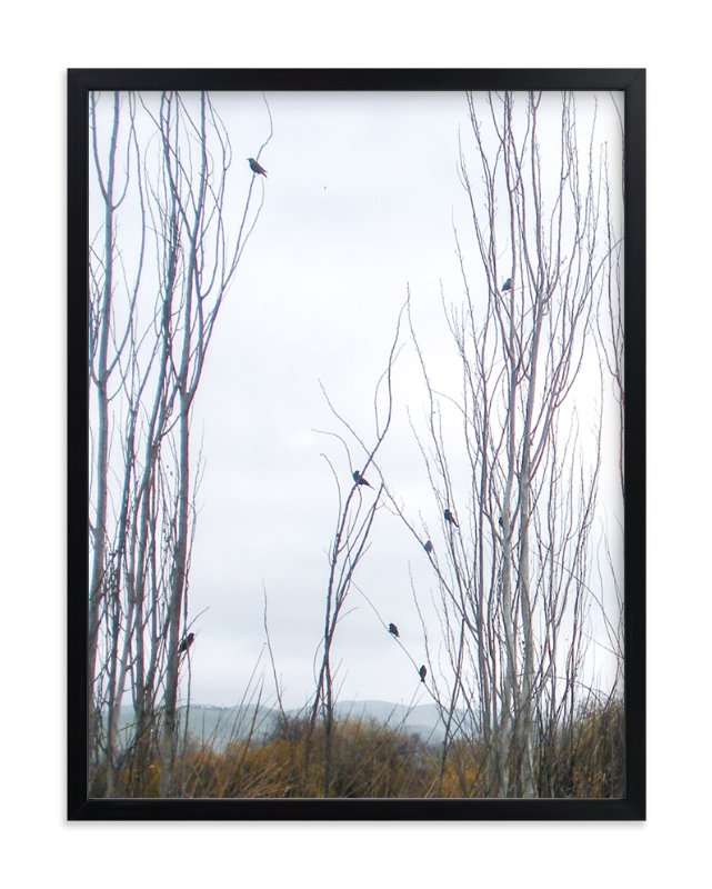 """Nine Birds"" - Art Print by Celia Maria in beautiful frame options and a variety of sizes."