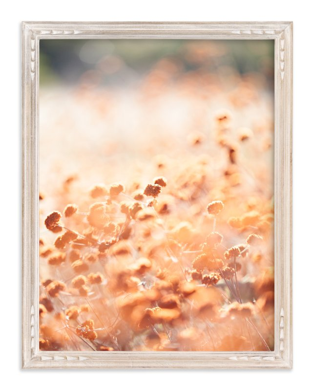"""Canyon Flowers"" - Art Print by Lindsay Ferraris Photography in beautiful frame options and a variety of sizes."