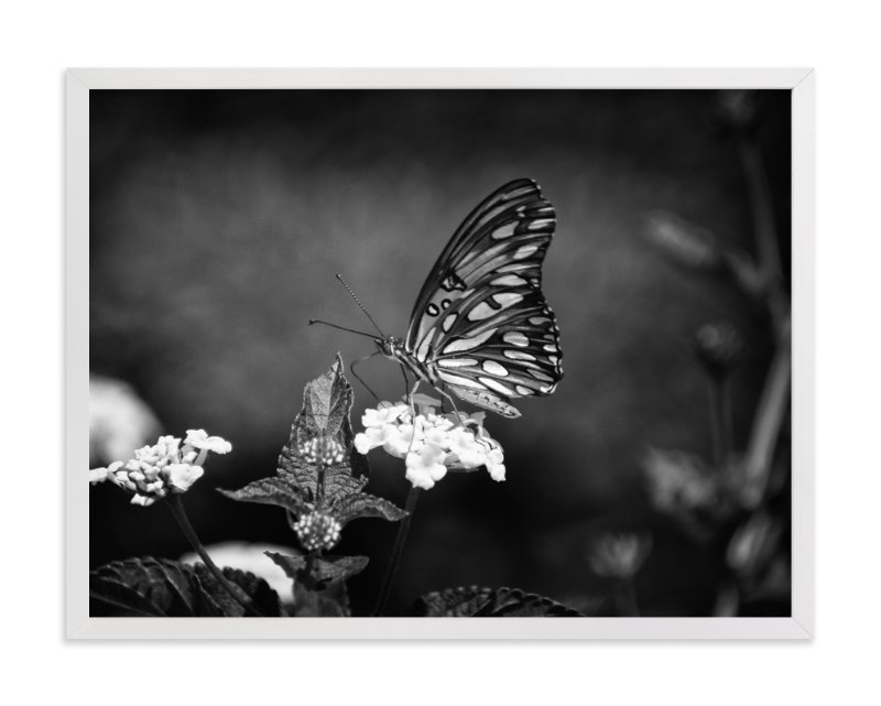"""Gulf Fritillary"" - Art Print by Donna Rosser in beautiful frame options and a variety of sizes."