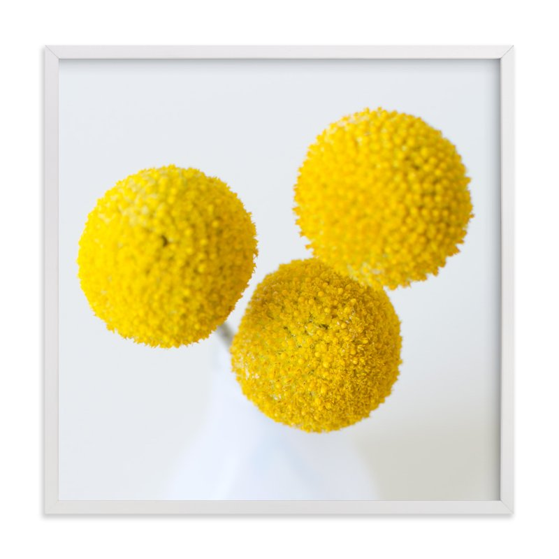 """""""Billy Buttons"""" - Art Print by Christina Flowers in beautiful frame options and a variety of sizes."""