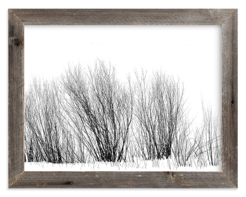 """Winter Willow"" - Art Print by Leslie Le Coq in beautiful frame options and a variety of sizes."