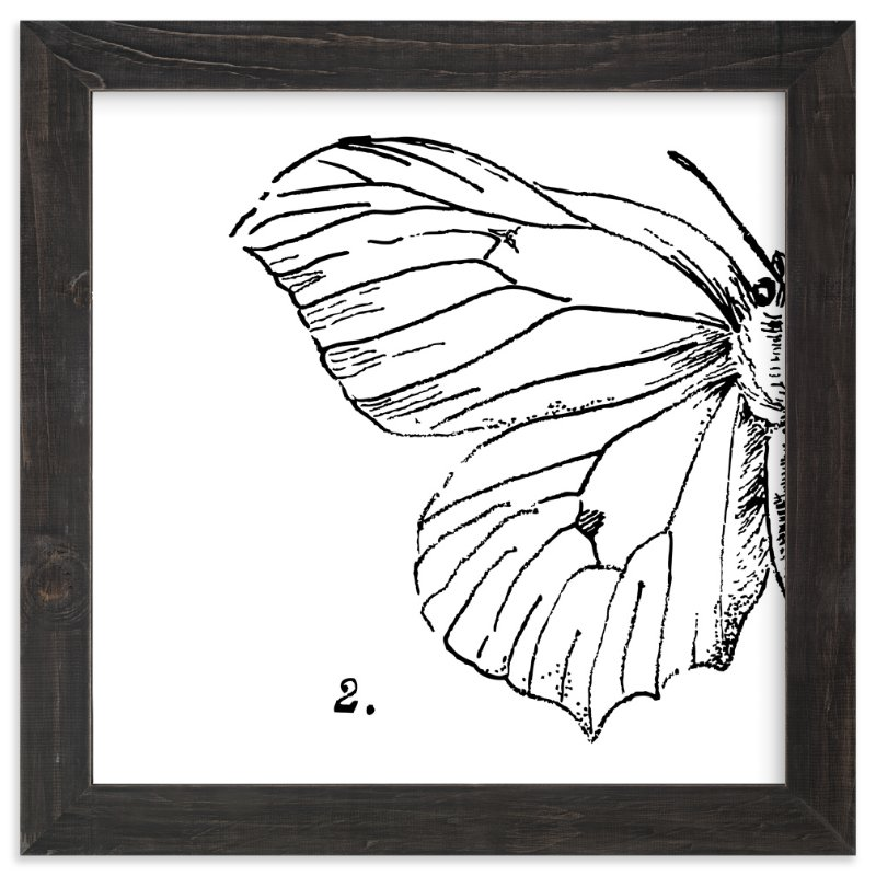 """Moth No. 2"" - Art Print by Nikkol Christiansen in beautiful frame options and a variety of sizes."