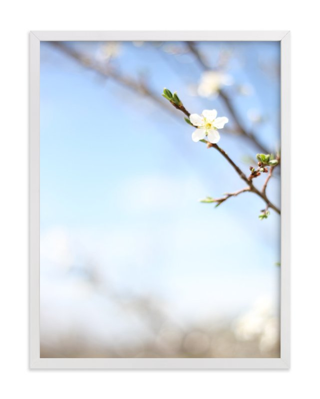 """""""Pear Blossom Sky"""" - Art Print by Sara Curtis in beautiful frame options and a variety of sizes."""