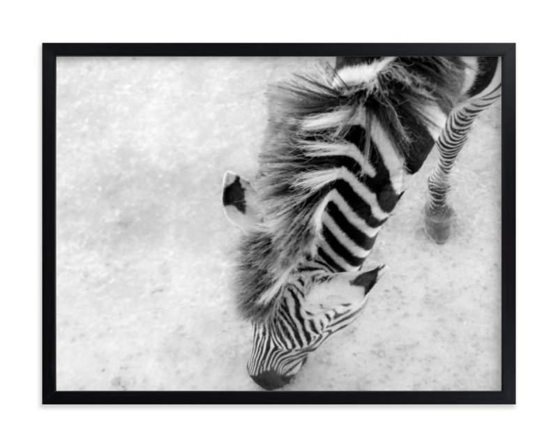 """""""Zebra from Above"""" - Art Print by Mary Ann Glynn-Tusa in beautiful frame options and a variety of sizes."""