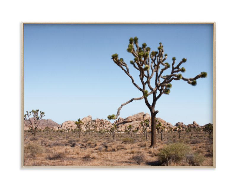 """Joshua Tree With Rock Formation in"" - Art Print by Kathy Van Torne in beautiful frame options and a variety of sizes."