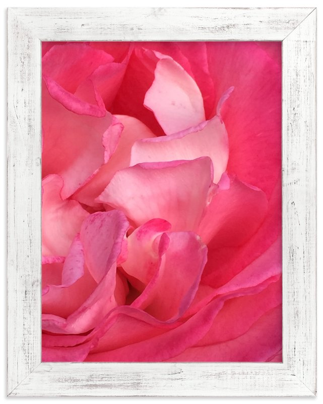 """""""Rose Petals"""" - Art Print by Jan Kessel in beautiful frame options and a variety of sizes."""