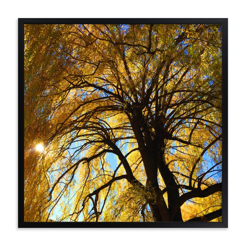 """Golden Ray Day"" - Art Print by Giulia Doyle in beautiful frame options and a variety of sizes."