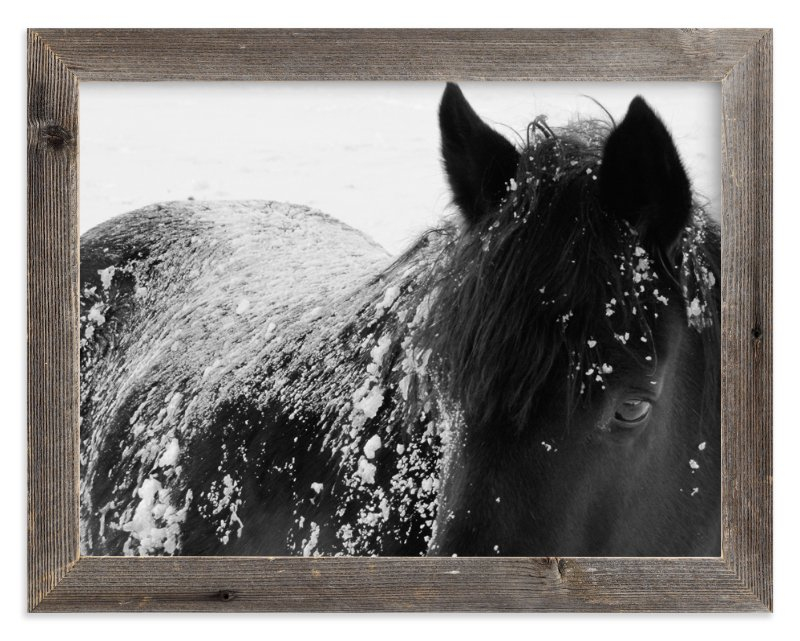 """""""A Shadow In A Storm"""" - Limited Edition Art Print by Leslie Le Coq in beautiful frame options and a variety of sizes."""