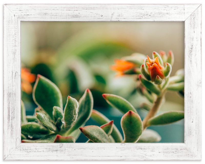 """""""Dew Drop By"""" - Art Print by Stacy Kron in beautiful frame options and a variety of sizes."""