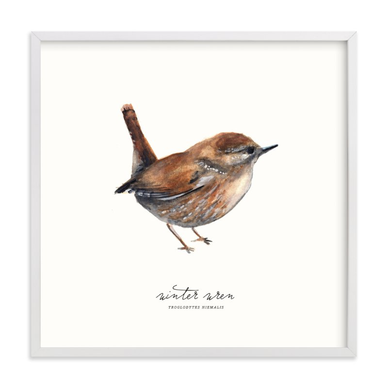 """Winter Wren"" - Art Print by Olivia Kanaley in beautiful frame options and a variety of sizes."