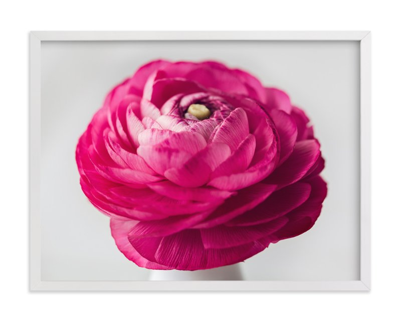 """""""Budding Ranunculus 3"""" - Art Print by Jessica Marchetti in beautiful frame options and a variety of sizes."""