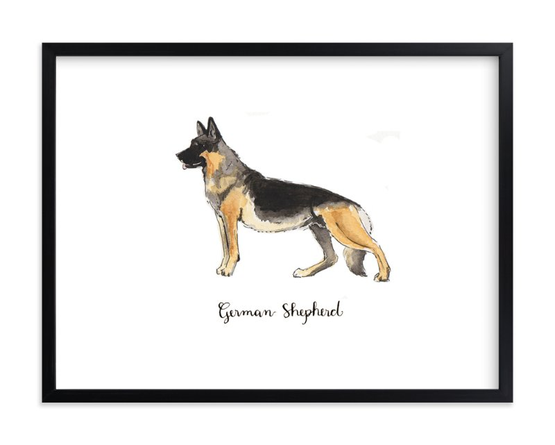 """""""German Shepherd"""" - Art Print by Megan Kelso in beautiful frame options and a variety of sizes."""
