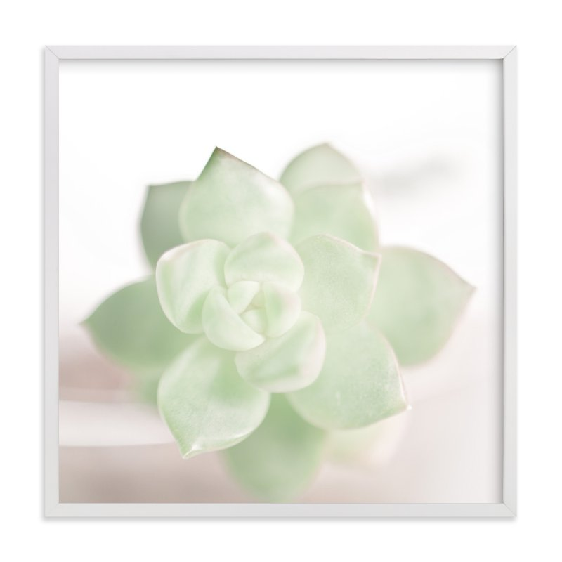 """Soft Succulent No. 2"" - Art Print by Andi Pahl in beautiful frame options and a variety of sizes."