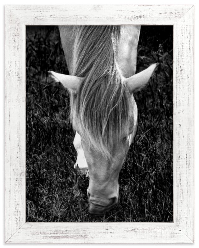 """""""Mystery Horse"""" - Art Print by Monica Janes Fine Art in beautiful frame options and a variety of sizes."""