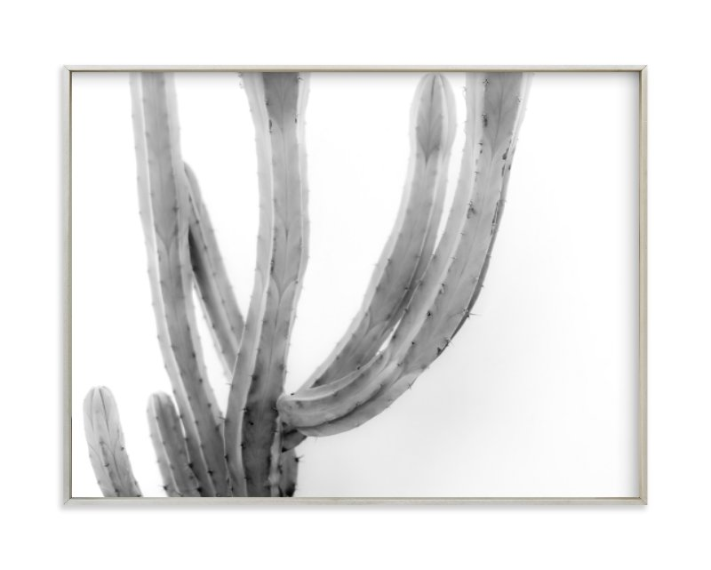"""Moorten Cactus Study 2"" - Art Print by Lisa Sundin in beautiful frame options and a variety of sizes."