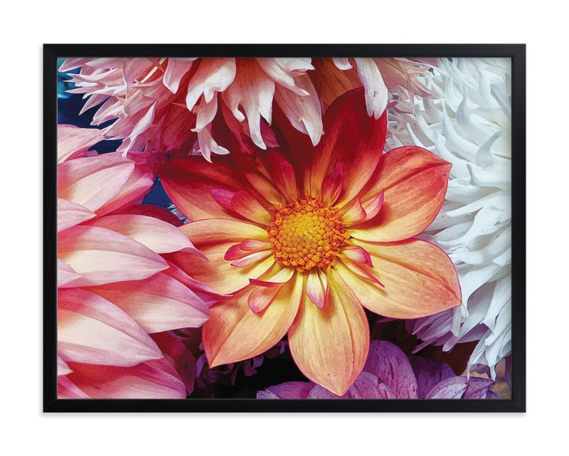 """""""Dahlia Mix II"""" - Art Print by Mazing Designs in beautiful frame options and a variety of sizes."""