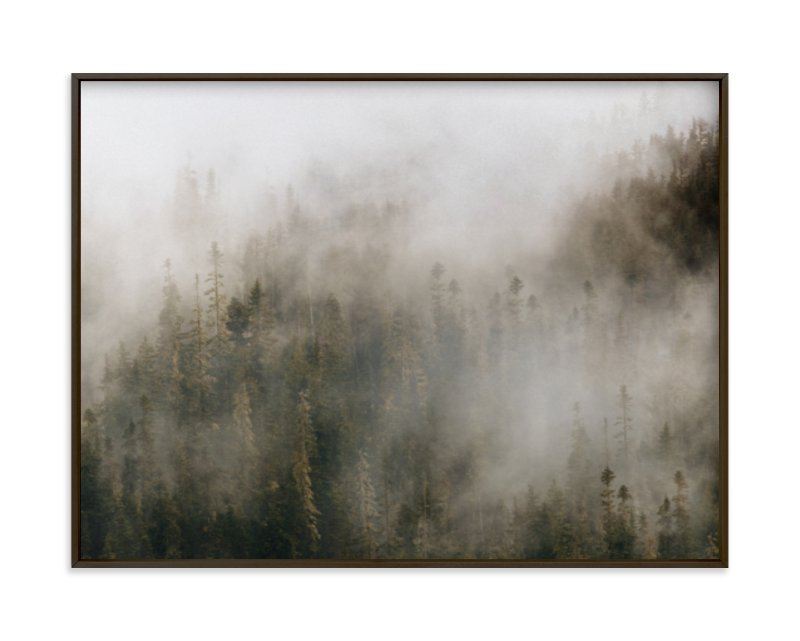 pacific north fog by Emily Coey