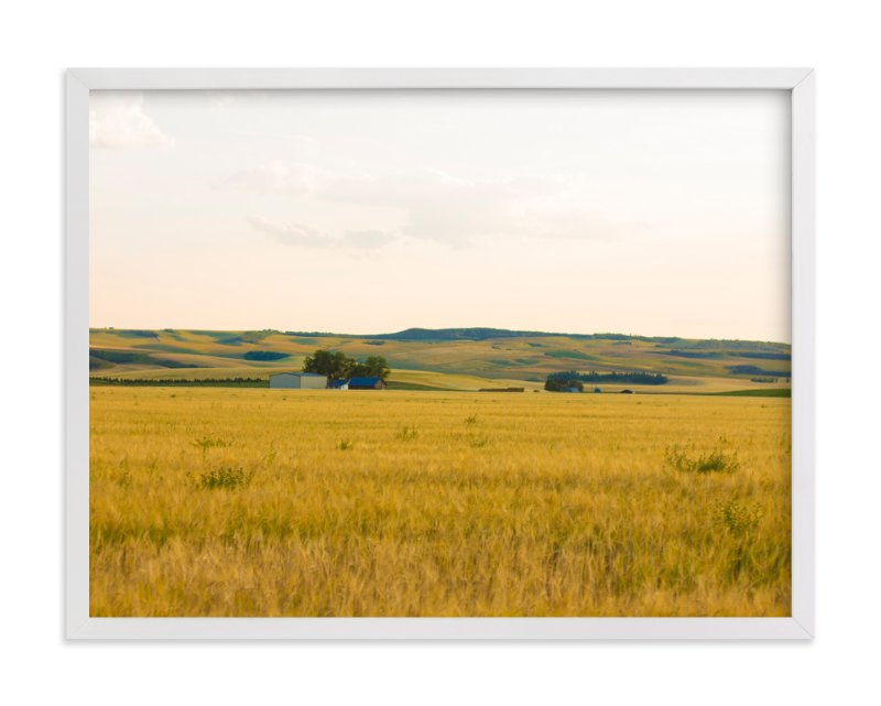 """""""Golden Fields"""" - Art Print by Kaylee Coles in beautiful frame options and a variety of sizes."""