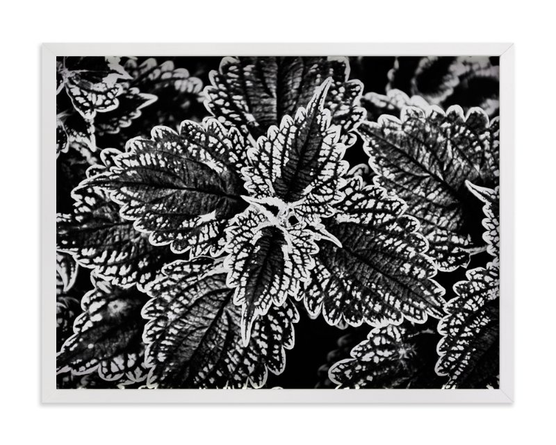 """BW Leaves"" - Art Print by Alexis Arnold in beautiful frame options and a variety of sizes."