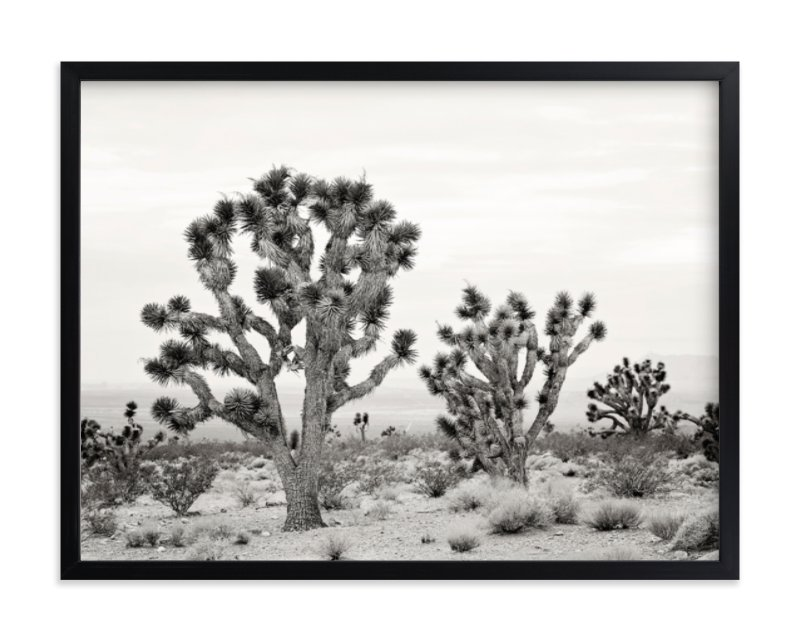 """Joshua Tree"" - Art Print by Kristi Jackson in beautiful frame options and a variety of sizes."