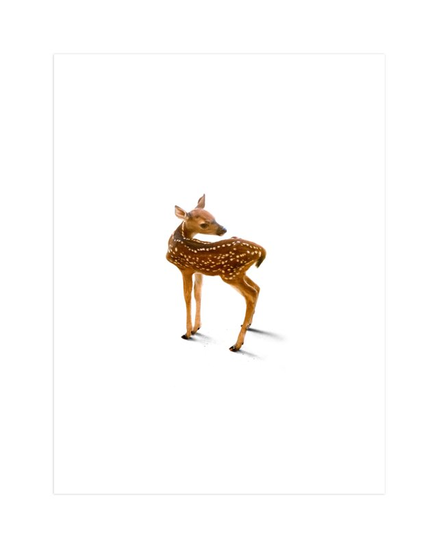 A Deer Friend Wall Art Prints By Andrew McClintock | Minted