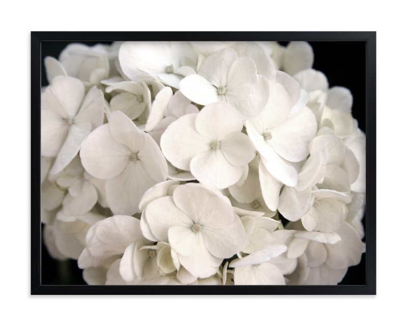 """""""White Petals"""" - Art Print by Elemental in beautiful frame options and a variety of sizes."""