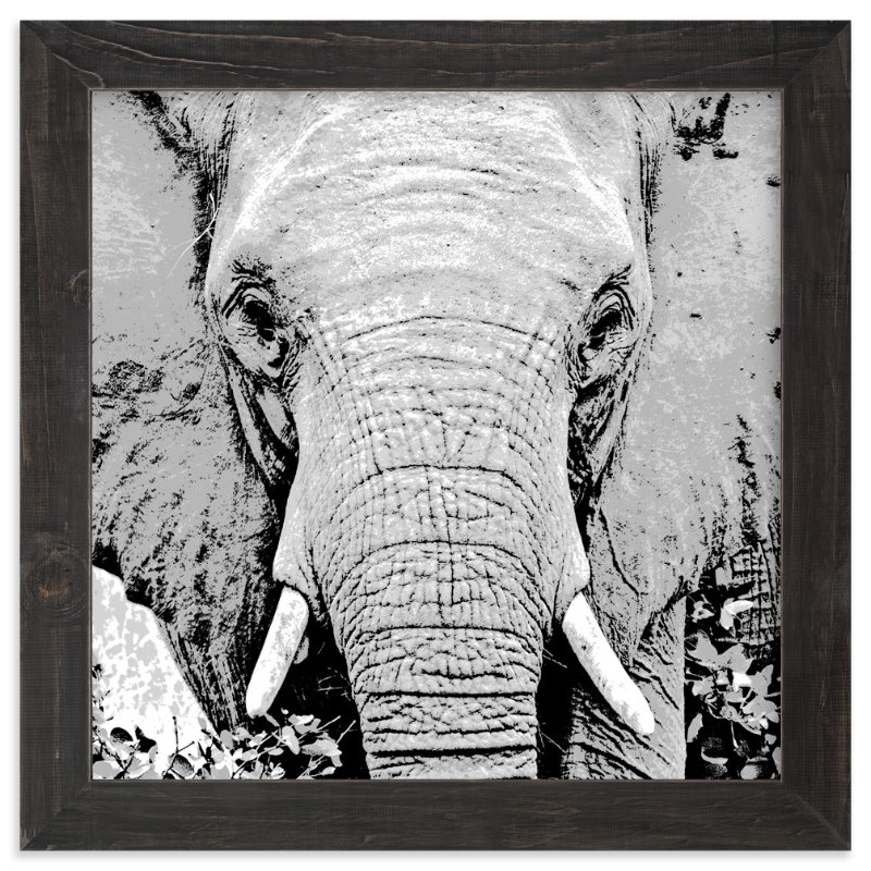 """mr ELEPHANT"" - Art Print by Gail Schechter in beautiful frame options and a variety of sizes."