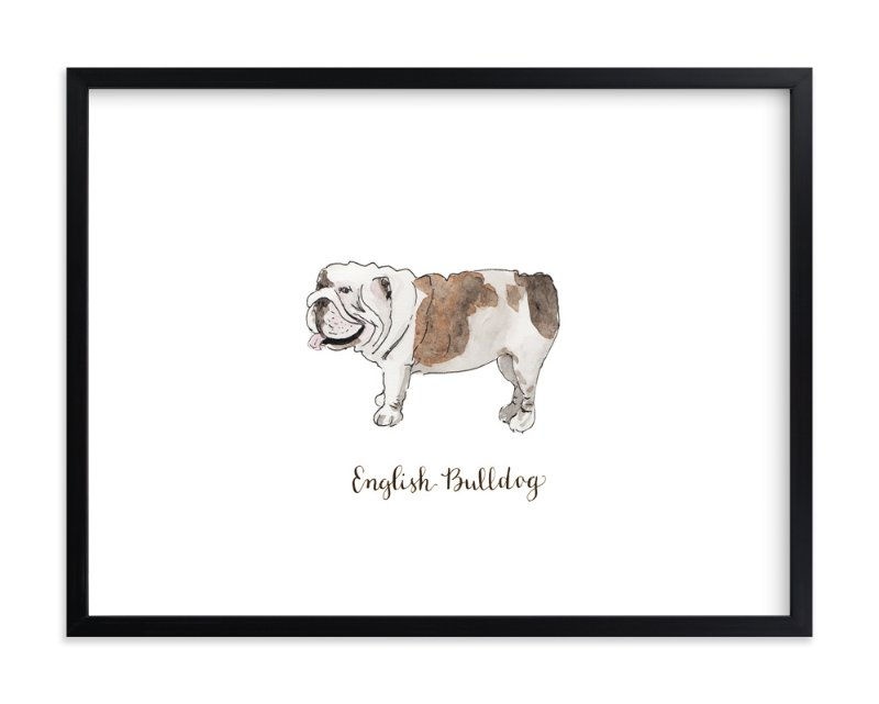 """English Bulldog"" - Art Print by Megan Kelso in beautiful frame options and a variety of sizes."