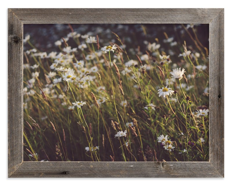 """Summer Flowers"" - Art Print by Stacy Cooke in beautiful frame options and a variety of sizes."