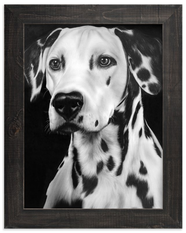 """Dalmation"" - Art Print by Jerry Winick in beautiful frame options and a variety of sizes."