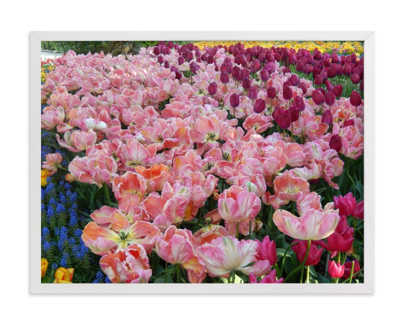 """""""Pretty Garden 1"""" - Art Print by Jan Kessel in beautiful frame options and a variety of sizes."""
