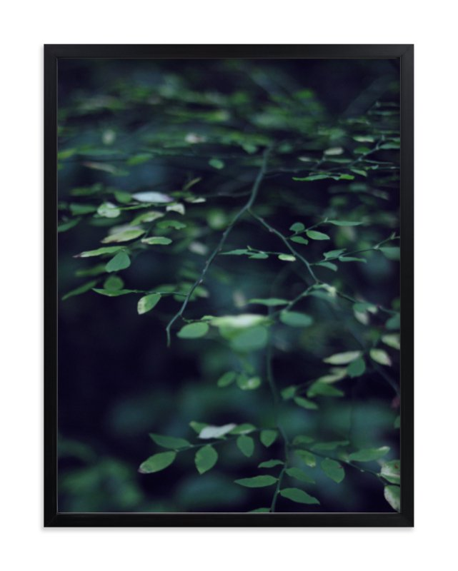 """Forest Focus"" - Art Print by Satpreet K in beautiful frame options and a variety of sizes."