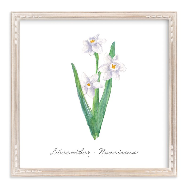 """""""December Narcissus"""" - Art Print by Liz Conley in beautiful frame options and a variety of sizes."""