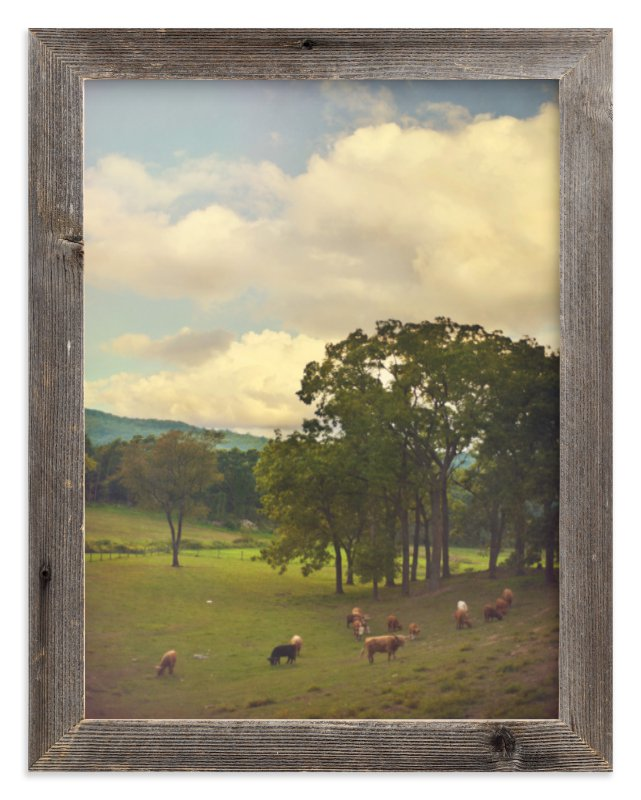"""""""Lazy Grazing"""" - Art Print by Smile Peace Love in beautiful frame options and a variety of sizes."""