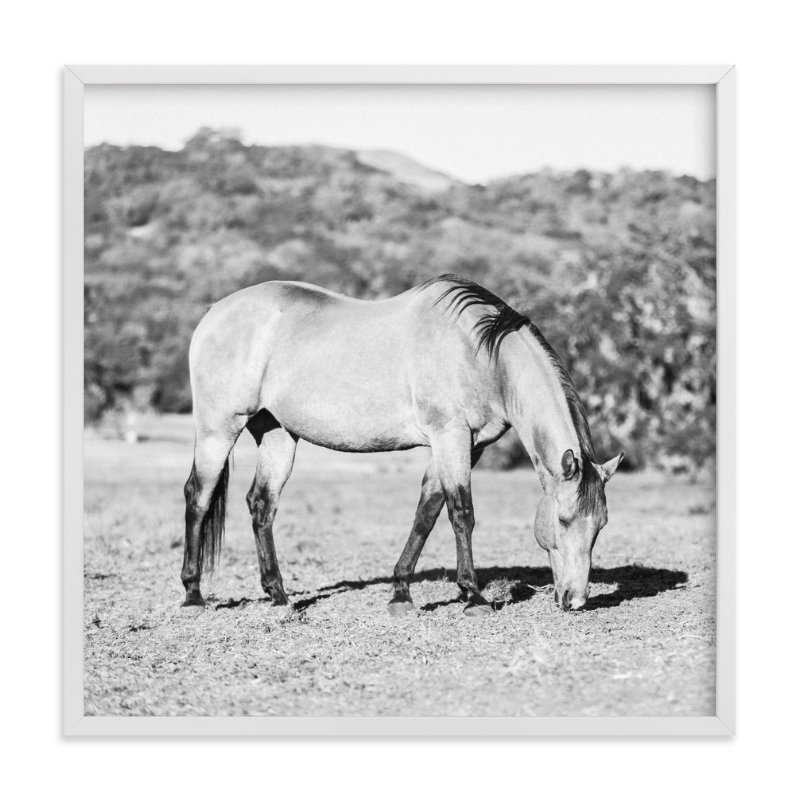 """""""Morning Graze"""" - Art Print by Jessica Cardelucci Nugent in beautiful frame options and a variety of sizes."""