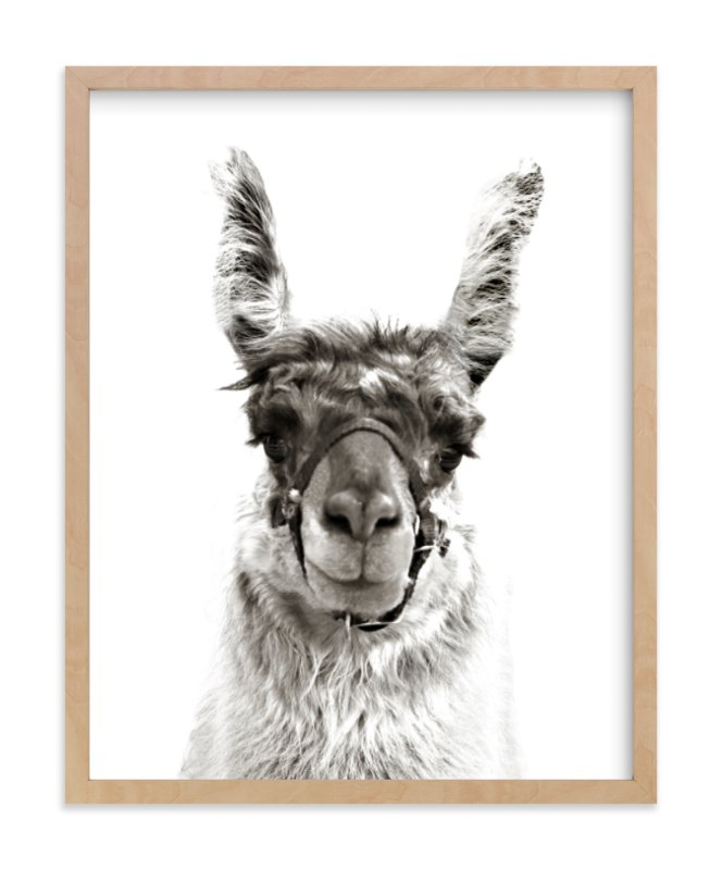 """llama"" - Art Print by Baumbirdy in beautiful frame options and a variety of sizes."