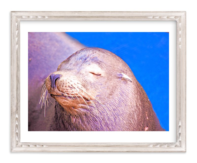 """""""Napping"""" - Art Print by NSMARK in beautiful frame options and a variety of sizes."""