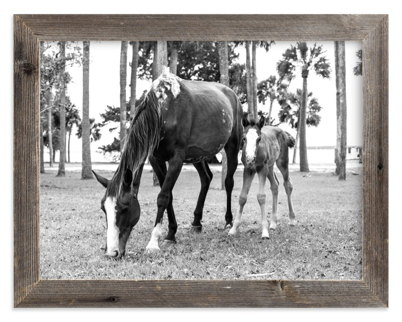 """Cumberland Island Horse Love"" - Art Print by Shari Margolin in beautiful frame options and a variety of sizes."