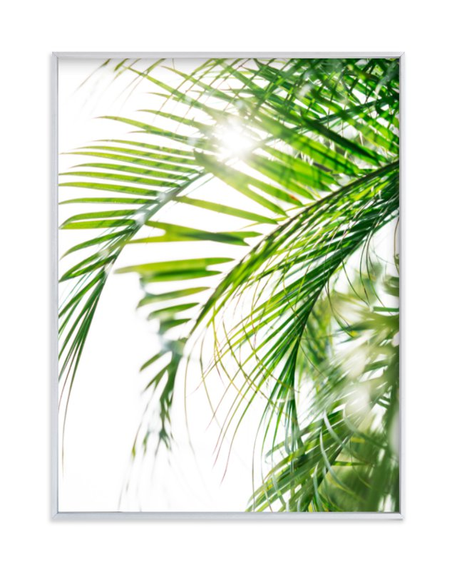 """Palm 3"" - Art Print by Kamala Nahas in beautiful frame options and a variety of sizes."