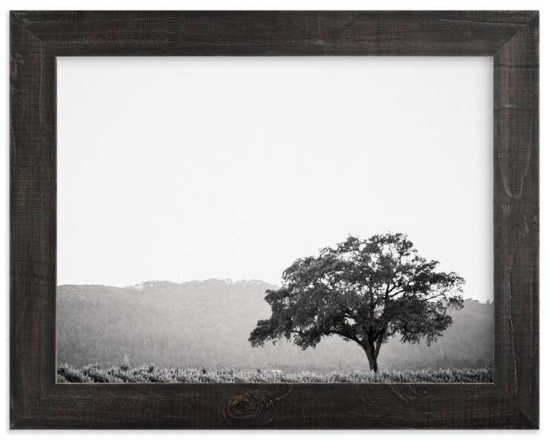 """Wild Oak"" - Art Print by Lindsay Ferraris Photography in beautiful frame options and a variety of sizes."