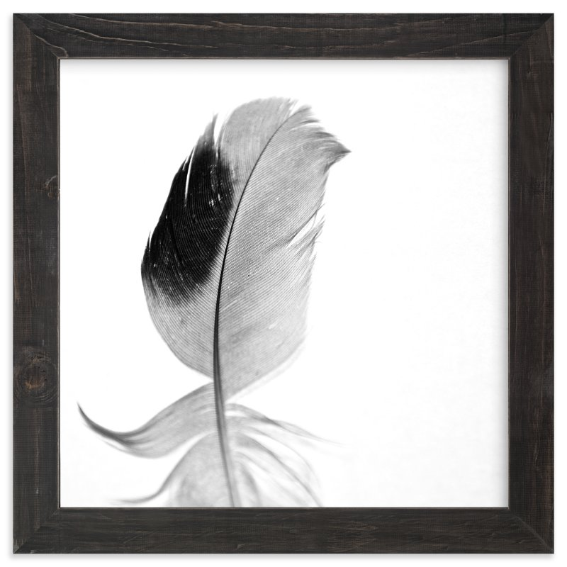 """Ruffled Feather"" - Art Print by Sarah Luna in beautiful frame options and a variety of sizes."