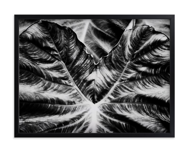 """""""Bold Leaf"""" - Art Print by Alexis Arnold in beautiful frame options and a variety of sizes."""