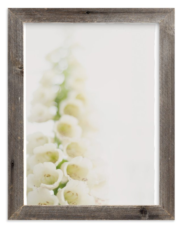 """""""Faded foxglove"""" - Art Print by Stacy Cooke in beautiful frame options and a variety of sizes."""