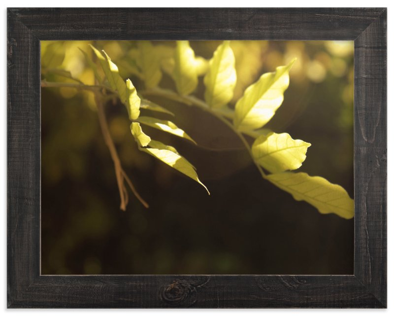 """""""Daybreak"""" - Art Print by Sarah Rose Storm in beautiful frame options and a variety of sizes."""